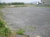 茨城県筑西市岡芹字八丁1076番7(仮換地37街区1画地) 土地 物件写真
