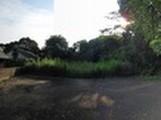 長崎県松浦市鷹島町中通免字戸井畑177番2 土地 物件写真
