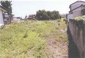 群馬県伊勢崎市茂呂南町4536番1 農地 物件写真