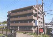 愛知県東海市加木屋町南鹿持12番地1 マンション 物件写真