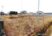 静岡県磐田市大久保字七区292番8 農地 物件写真