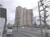 福井県福井市開発四丁目111番地 マンション 物件写真