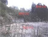 佐賀県佐賀市富士町大字鎌原字山頭1682番 農地 物件写真