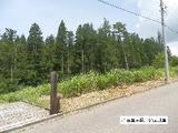 岐阜県郡上市高鷲町鮎立字木ノ根坂5469番318 土地 物件写真
