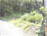 静岡県田方郡函南町柏谷字沖清水1235番46 土地 物件写真