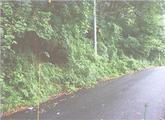 静岡県熱海市熱海字曽我山1993番150 土地 物件写真