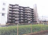 埼玉県春日部市中央六丁目3番地6 マンション 物件写真