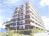 千葉県松戸市東松戸一丁目13番地10 マンション 物件写真