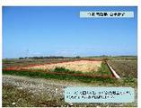 富山県黒部市出島字東島1061番 土地 物件写真