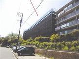 神奈川県藤沢市立石一丁目2537番地8 戸建て 物件写真