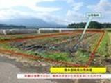 宮崎県小林市堤字宮ノ元574番1 土地 物件写真