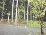 京都府京都市左京区上高野東山43番 土地 物件写真