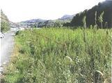 福岡県福岡市西区大字小田字吉津1513番 農地 物件写真