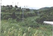 鹿児島県肝属郡錦江町田代麓字立神5147番246 農地 物件写真