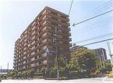 大阪府堺市南区原山台五丁456番地26 マンション 物件写真