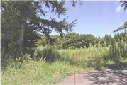 青森県青森市大字新城字天田内19番110 農地 物件写真