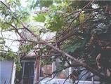 東京都荒川区西尾久六丁目1285番地3 戸建て 物件写真