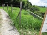 和歌山県和歌山市上野字膳棚220-1外1筆 土地 物件写真