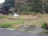兵庫県朝来市和田山町市場字黒垣野63番 土地 物件写真