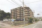 千葉県市川市大町590番地 マンション 物件写真