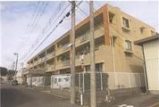 千葉県市川市堀之内五丁目1270番地2 マンション 物件写真
