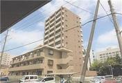 千葉県船橋市湊町二丁目2720番地163 マンション 物件写真