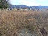 福井県坂井市丸岡町猪爪3字東古屋2番1、2番2、5番1、14番 土地 物件写真