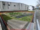 兵庫県西脇市小坂町字大歳204番1 土地 物件写真