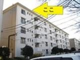 埼玉県新座市新座三丁目1336番地3 マンション 物件写真