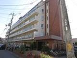 奈良県橿原市中曽司町199番地1 マンション 物件写真