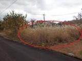 岡山県真庭市蒜山東茅部2002番19 土地 物件写真