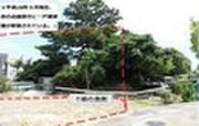 沖縄県沖縄市園田2丁目998番11 土地 物件写真