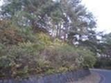 岩手県上閉伊郡大槌町吉里吉里第28地割字筋39番4 土地 物件写真