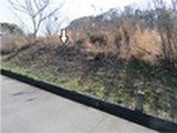 三重県志摩市志摩町布施田字目張坂 土地 物件写真