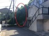 神奈川県横浜市保土ヶ谷区坂本町字大谷 土地 物件写真