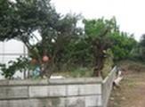 茨城県鹿嶋市大字平井20番166 土地 物件写真