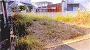 徳島県徳島市川内町沖島614番18 土地 物件写真