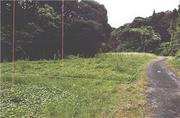 宮崎県宮崎市清武町今泉字三反田甲607番2 農地 物件写真