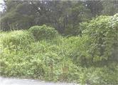 石川県小松市津波倉町ワ38番 土地 物件写真