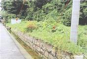 広島県尾道市向東町字長谷3057番2 土地 物件写真