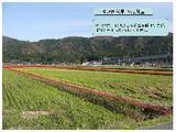 富山県下新川郡朝日町竹ノ内118番 土地 物件写真