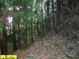 大分県日田市大字小野字ハサコ山2922番1 土地 物件写真