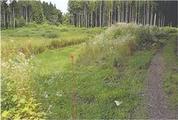 青森県上北郡東北町大字大浦字向山69番4 農地 物件写真