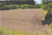 青森県上北郡東北町大字大浦字榎谷地21番1 農地 物件写真