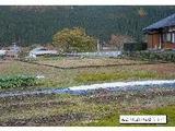 岐阜県郡上市大和町万場字松原405番2 土地 物件写真