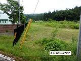 岐阜県高山市朝日町小谷865番1 土地 物件写真