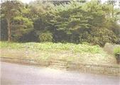 千葉県市原市西国吉字新林1681番11 土地 物件写真