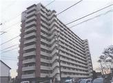 茨城県牛久市柏田町字上野3253番地35 マンション 物件写真