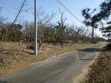 茨城県神栖市柳川字喜多村上3376-2 土地 物件写真
