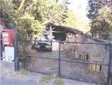 神奈川県足柄上郡山北町岸字柏坂389番 土地 物件写真